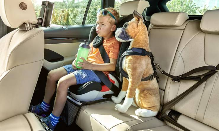 thumb_OCTAVIA_COMFORT_UTILITY_child_seat_dog_belt